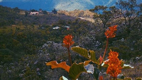 A Serra da Canastra é uma das regiões ma