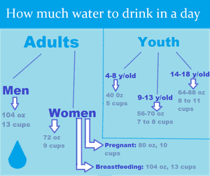 How much water to drink in a day (gender and age)