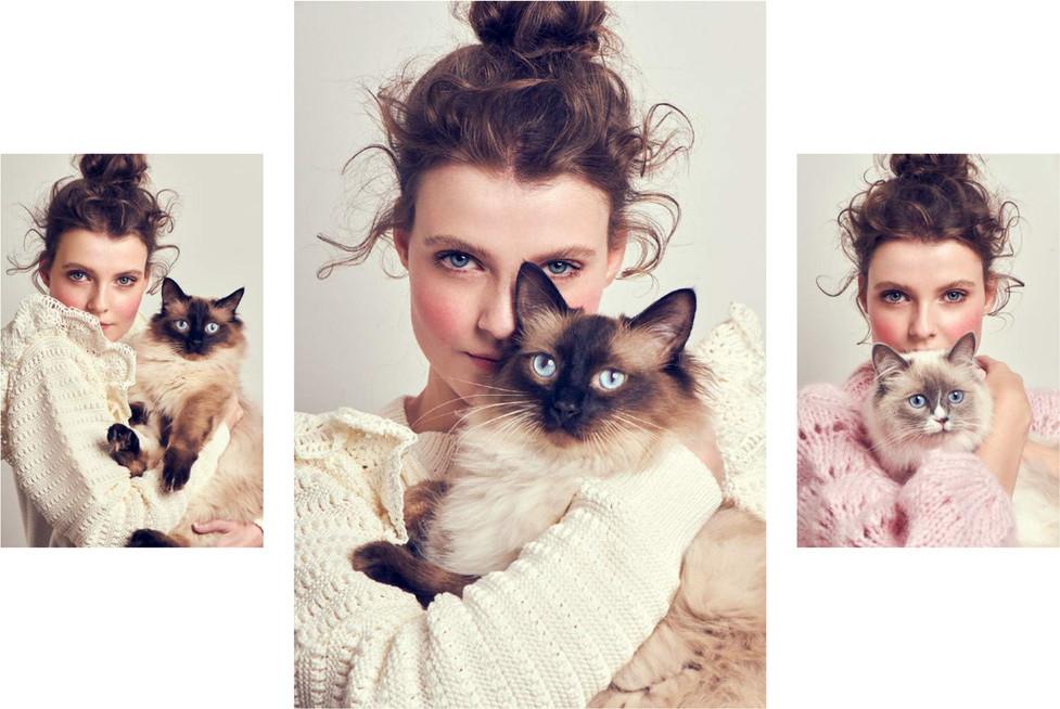 Cat-Beauty-4.jpg
