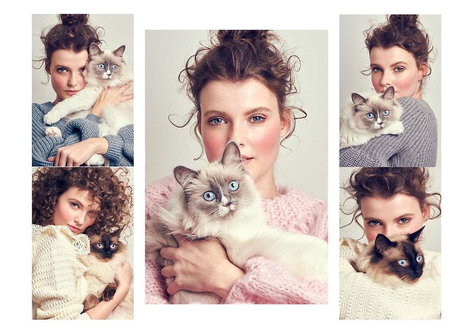 Cat-Beauty--1.jpg