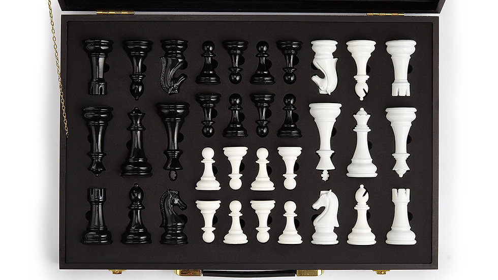 Case containing chess pieces (black & white)