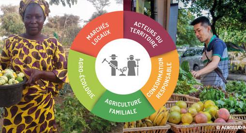 Éclairage Covid-19 | L'agriculture familiale agro-écologique pour des systèmes alimentaires durables