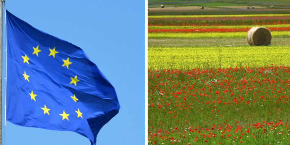 Webinaire   IDDRI   Une transition juste pour aligner le système alimentaire européen et le Pacte vert