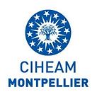 CIHEAM - IAMM