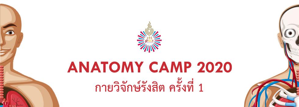Anatomy Camp 2020