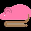 008-rat.png