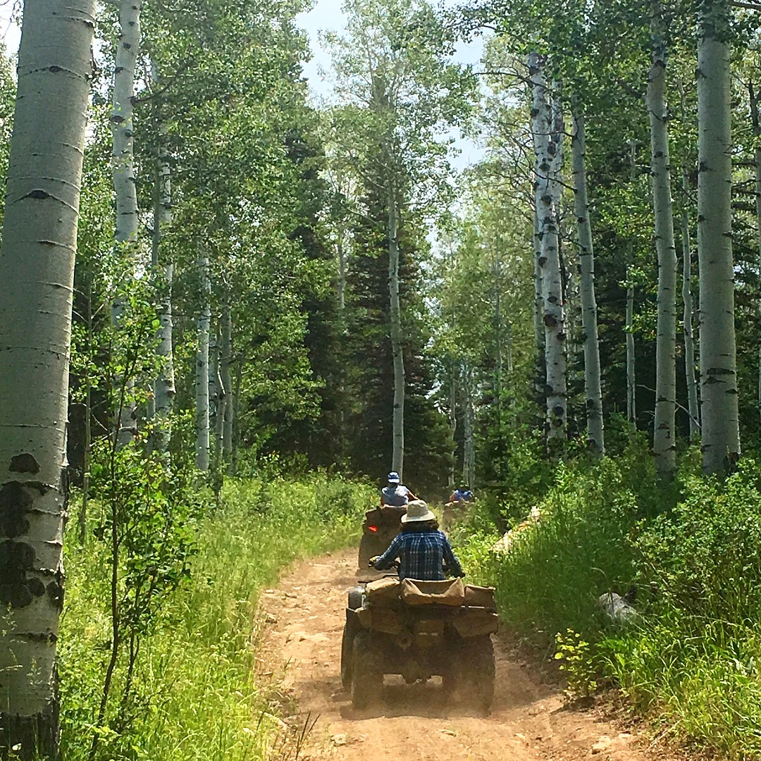 OHV Adventures