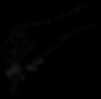 2020_hand-logos-02.png