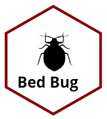 Bed Bug.png