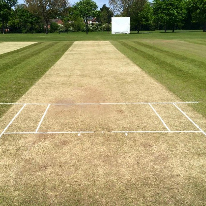 Cricket - 1st Team - Home Game