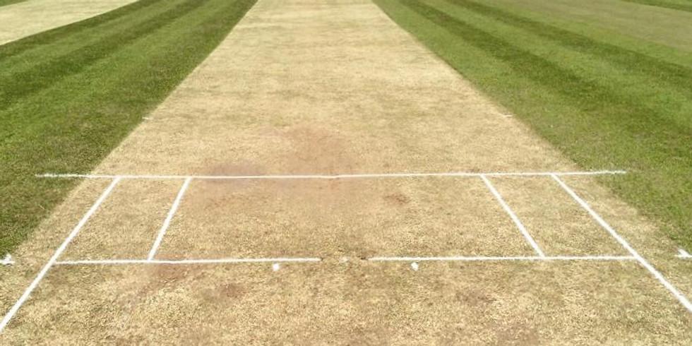Cricket - Sunday Team  - Home Game
