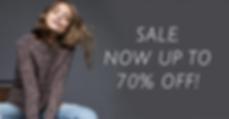 2020 fall january sale.png