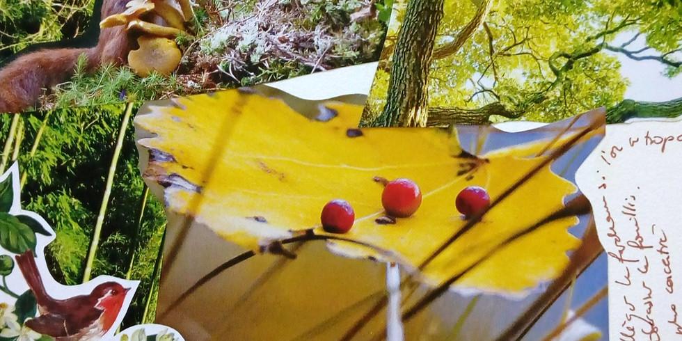 Journal créatif - les vertus de l'automne