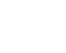 W_DDS.png