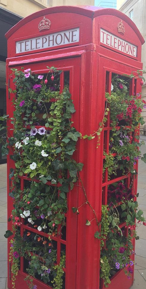 phone box bath flowers.jpeg