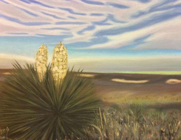 Yucca on the Plains SOLD