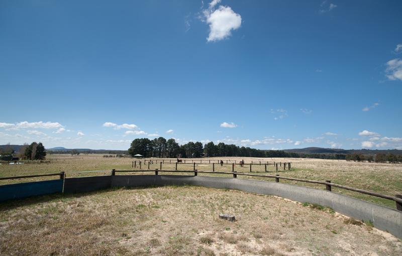32 round horse yards