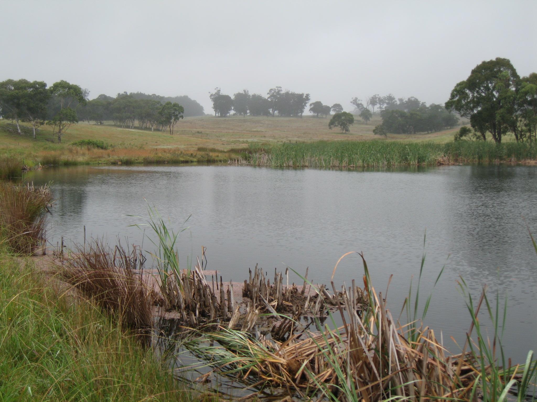 01 main dam
