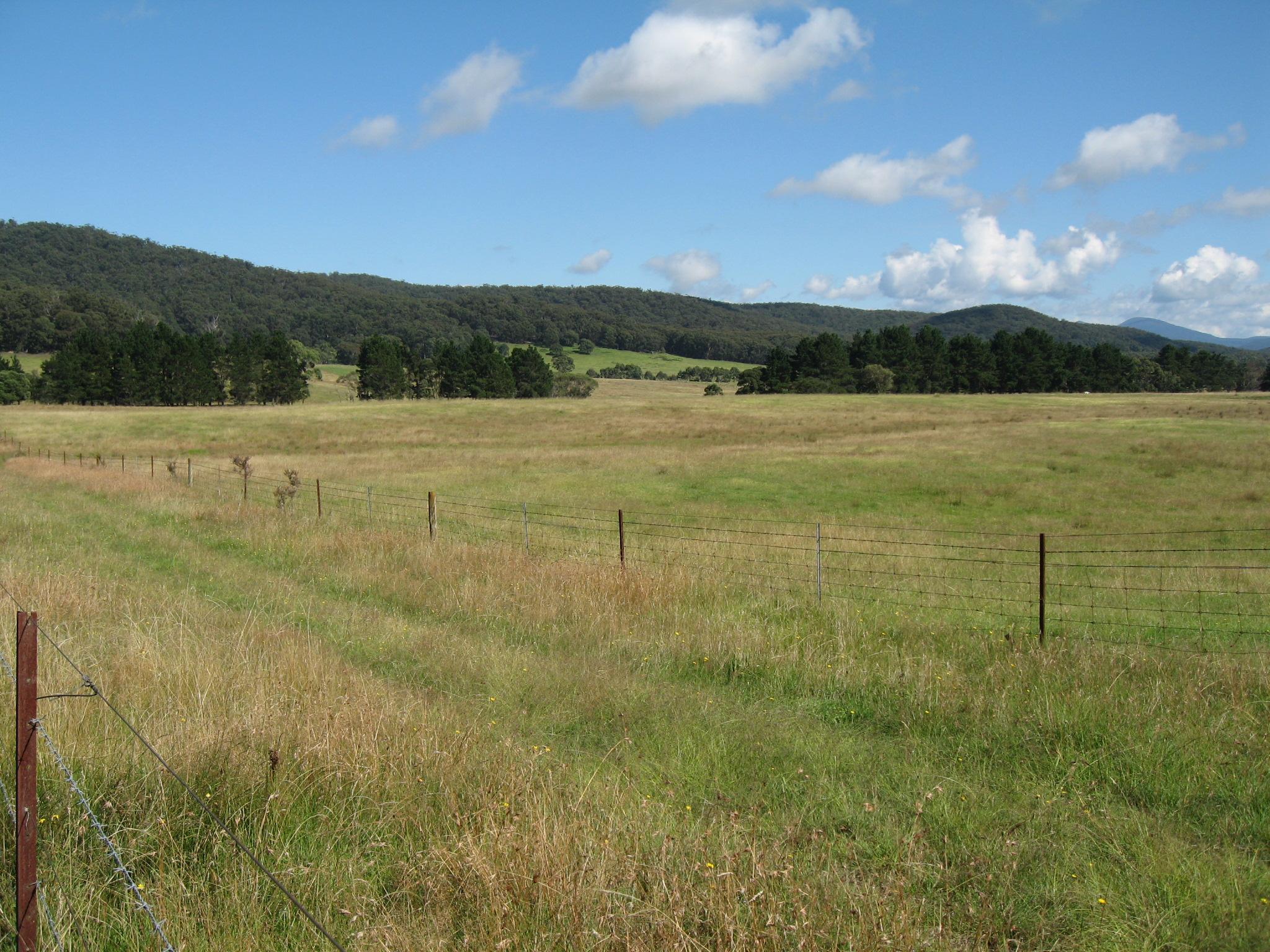 09 pasture
