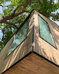 modern custom home tree house