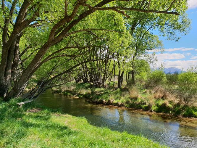 twizel river 2.jpg
