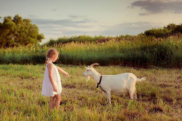 Девочка с козочкой
