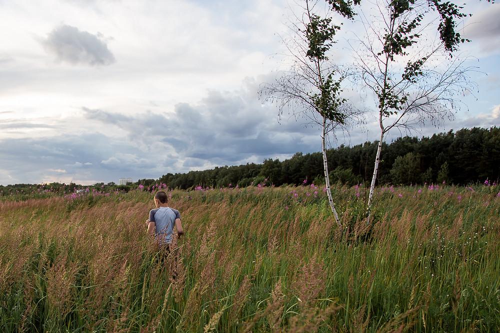 фотопрогулка в поле
