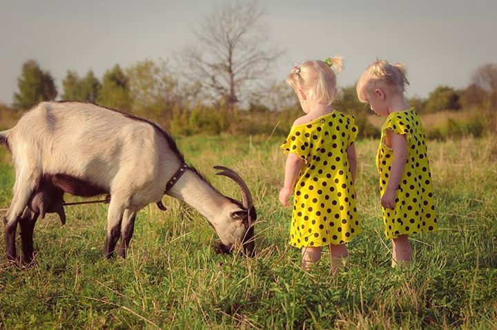 Девочки с козочкой