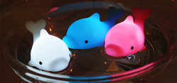 Dolphin Bath Light