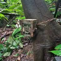 Camera trap setup