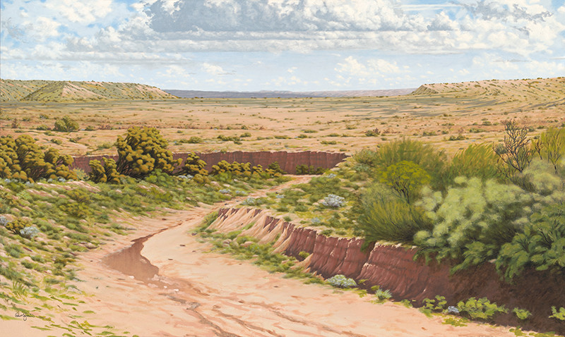 """""""Open Spaces of Galisteo, NM"""""""
