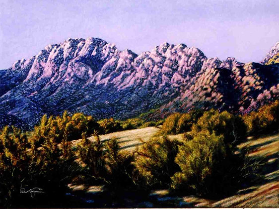 """Organ Mountains, NM"""