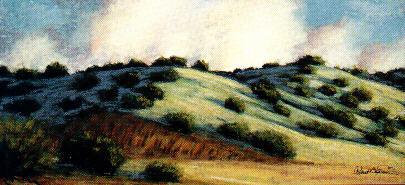 """""""NM Blue Hills"""""""