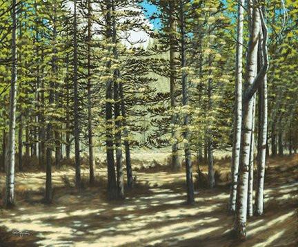"""Santa Fe National Forest, NM"""