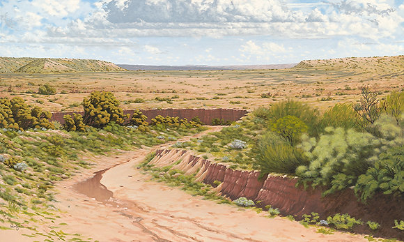 """Open Spaces of Galisteo, NM"""