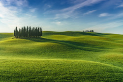 Spring - Tuscany