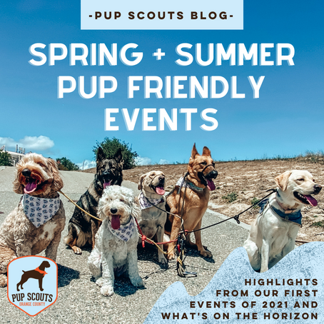 Spring + Summer Pup Friendly Events