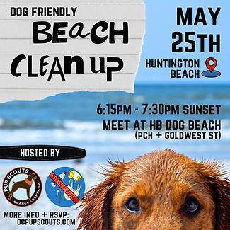 OCPSxPMN - Beach Clean Up.png