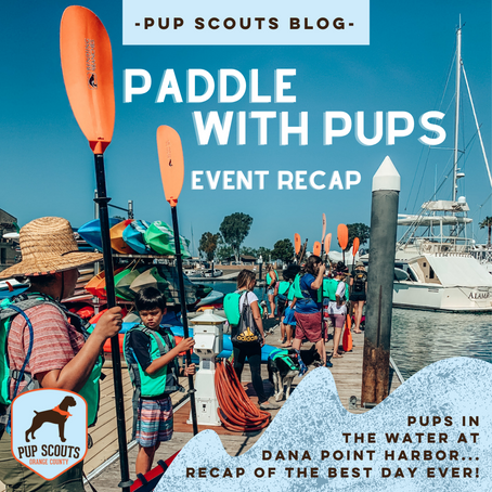 Paddle With Pups - Event Recap