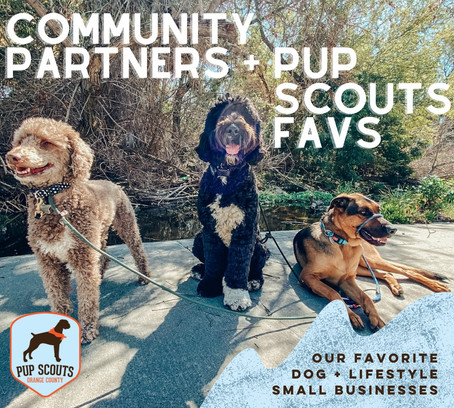 Community Partners + Pup Scouts Favs