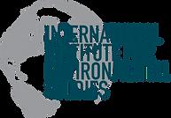 IIES logo final_full text.png