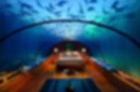 underwatersuite11.jpg