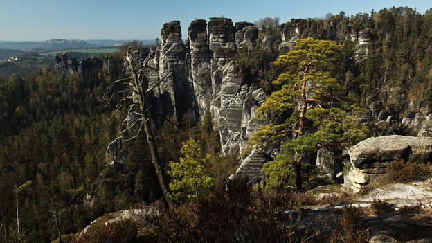 WILD GERMANY - SAXONIAN SWITZERLAND (2011)