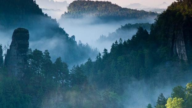 WILD GERMANY - SAXONIAN SWITZERLAND