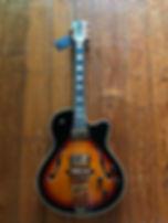 stagg violin guitar.jpg