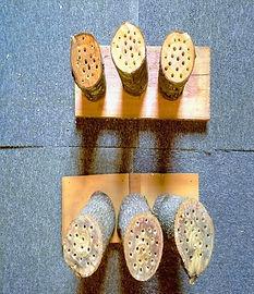 Native Bee Blocks.jpg