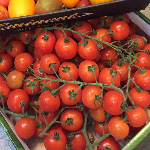 Fresh Holland Cherry Tomatoes