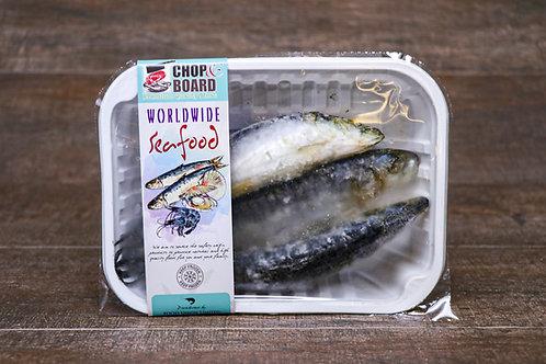 Portuguese Sardine