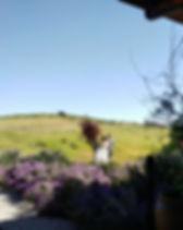 Horsetail Ranch Wedding.jpg
