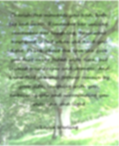Poem by Leslie Werling Psychic Medium Reiki Master